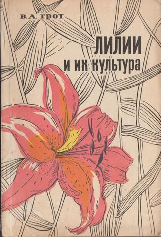 Лилии и их культура