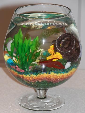 Мини аквариум бокал 3 л