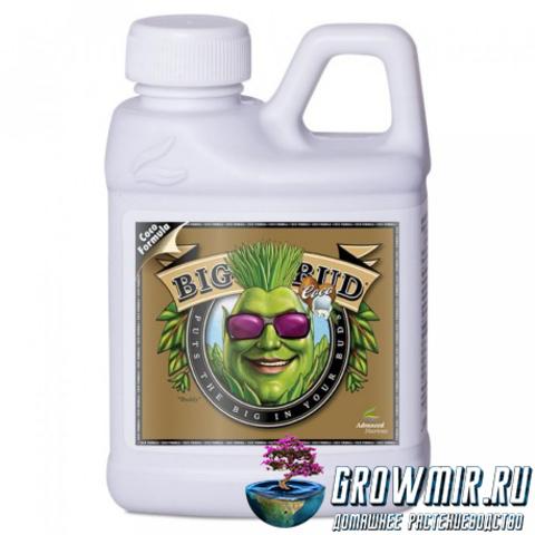 Стимулятор для роста и цветения Big Bud Coco Liquid 5 (4л)