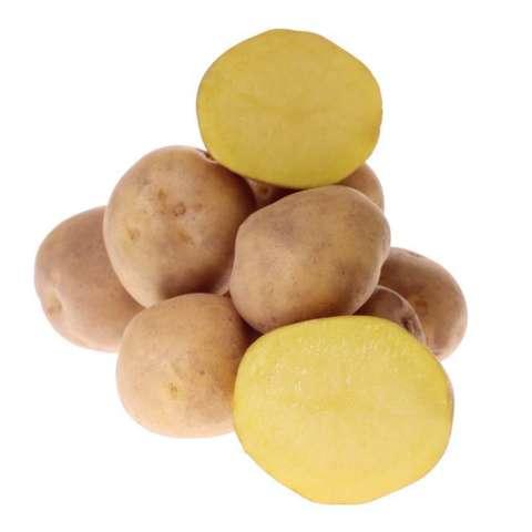 Картофель семенной Метеор ультра ранний СЭ 28/55 уп.2кг