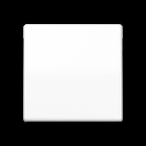 Выключатель одноклавишный проходного типа. 10 A / 250 B ~. Цвет Белый. JUNG AS. 506U+AS591WW