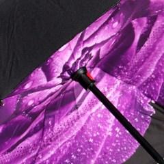 Zont Naoborot механический фиолетовая роза с росой