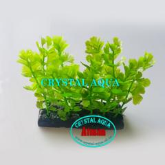 Растение Атман H-178C, 10см