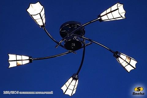 2630/03C-5 светильник потолочный