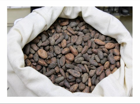 Какао бобы Trinidad and Tobaco Plantacion Grade 1