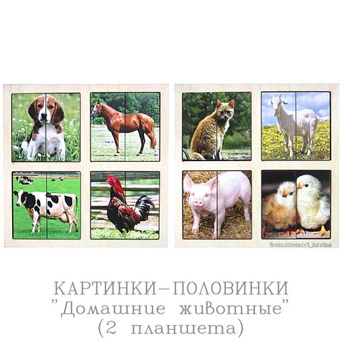КАРТИНКИ-ПОЛОВИНКИ