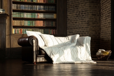 Одеяло пуховое 200x220 «Camel Grass» легкое
