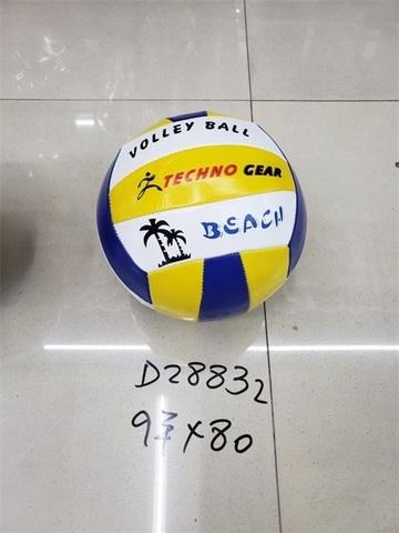 Мяч волейбольный, Д28832