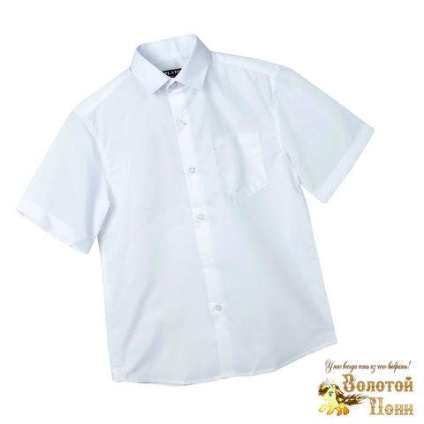 Рубашка школьная мальчику (116-164) 210531-Р2936.3