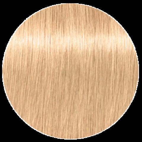 Schwarzkopf Igora Royal New 10-4 (Экстра светлый блондин бежевый) - Краска для волос