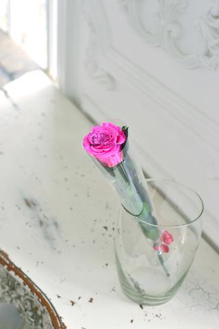 Роза на стебле Premium Оптом Высота*Бутон (37см*5-6см) Цвет ярко розовый