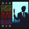 Curtis Stigers With The Danish Radio Big Band / One More For The Road (LP)