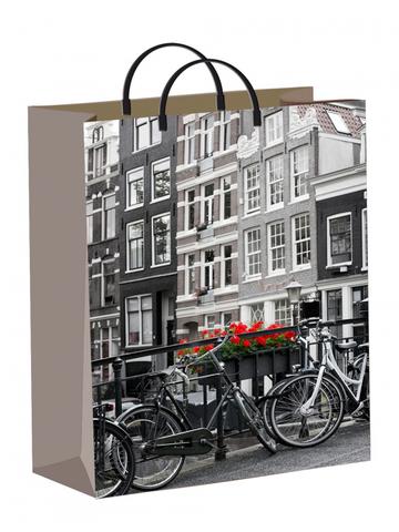 Подарочные пакеты 30х40+10 из мягкого пластика Голландия