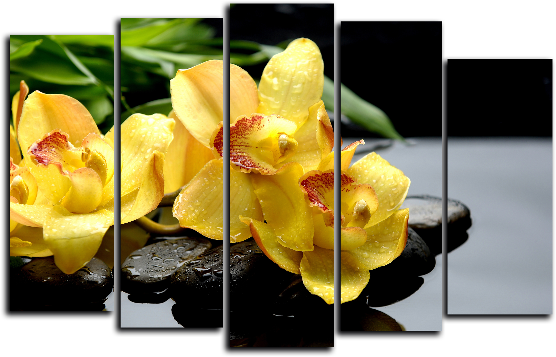 "Цветы Модульная картина ""Желтая орхидея"" М772.png"