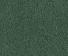 Искусственная кожа Oregon (Орегон) 01