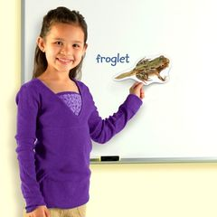 Жизненный цикл лягушки (магнитный) Learning Resources