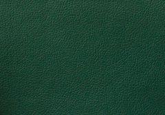 Искусственная кожа Domus (Домус) green