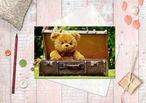 Медведь в чемодане