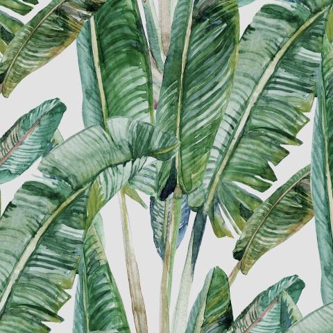 банановые листья  в акварели