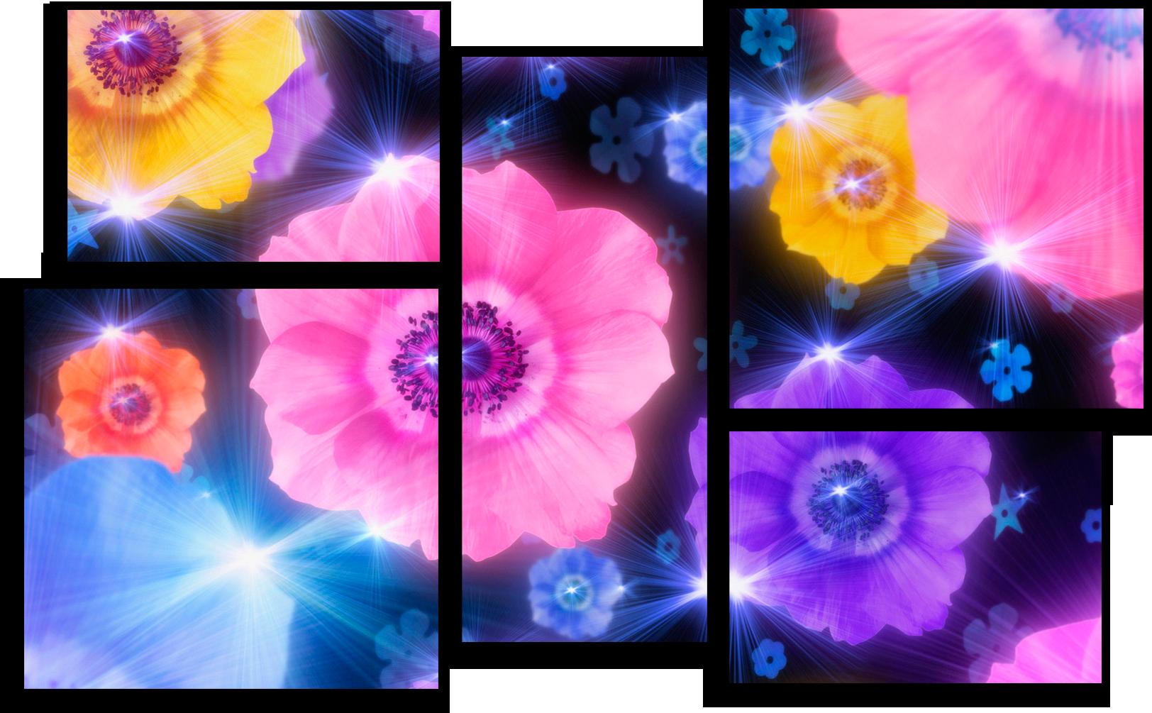 """Цветы Модульная картина """"Блики цветов"""" М203.png"""