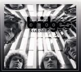 Bridges / Vakenett (CD)