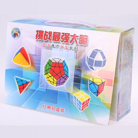 Набор головоломок подарочный - 6 шт.