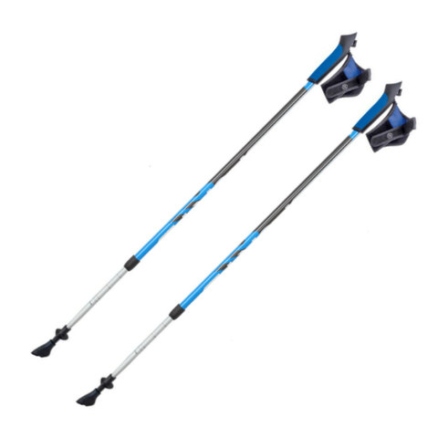 Скандинавские палки Extreme Nordic Walking S2 телескопические