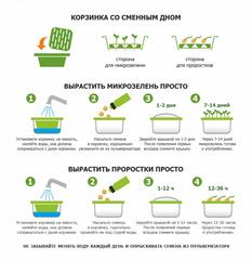 Проращиватель Моя микрозелень - вырасти витамины: универсальный проращиватель микрозелени и семян