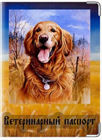 """Обложка для ветеринарного паспорта """"Золотой ретривер"""""""