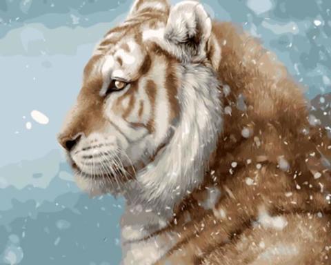 Картина раскраска по номерам 30x40 Спокойный зверь под снегом