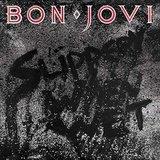 Bon Jovi / Slippery When Wet (LP)