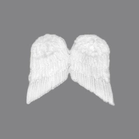 Крылья перьевые белые 60 х 50 см