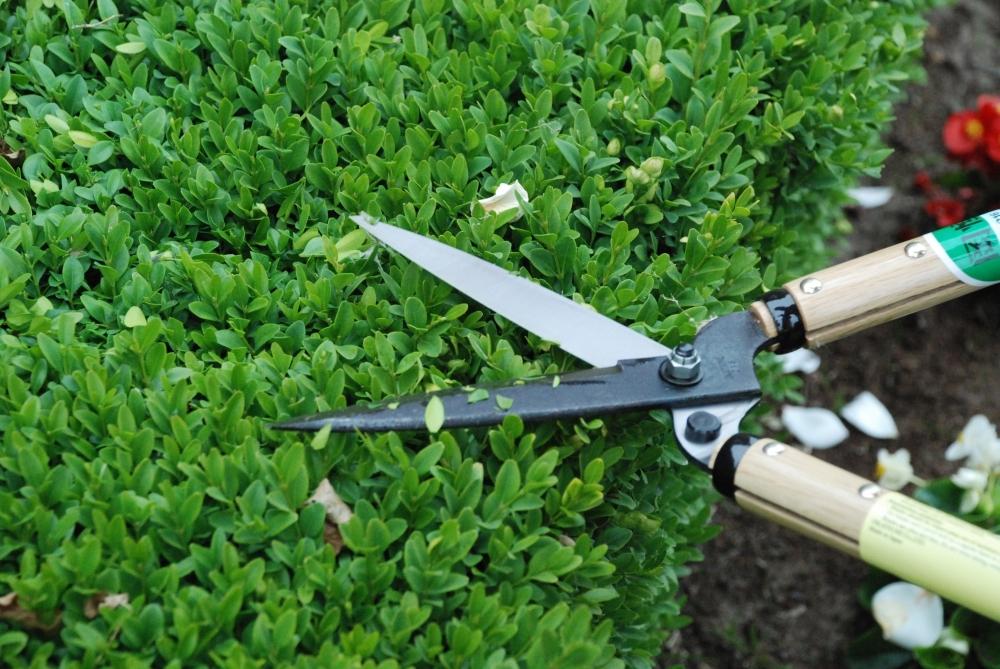 Ножницы садовые для живой изгороди Okatsune 216