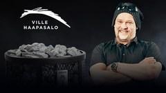 HARVIA Дровяная печь Ville Haapasalo 240