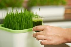 Проращиватель семян АэроСАД автоматический гидропонный, Здоровья Клад Х1