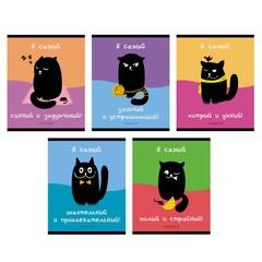 Тетради А5 48л. Скрепка. Клетка-Черный котик