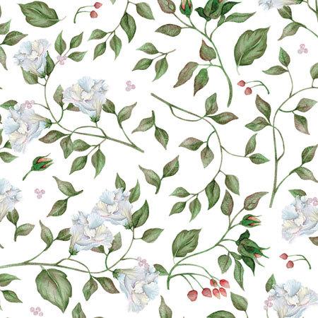 Этиклейка Белые цветы