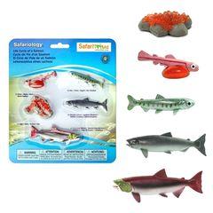 Реалистичные фигурки Жизненный цикл лосося Safari Ltd 100267