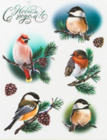 017-2420 Декупажная карта «Птицы», 29.7 × 21 см