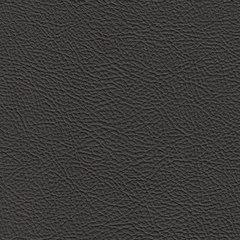 Искусственная кожа Bielastisch (Биеластиш) 238-1808