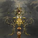 Joep Beving / Conatus (2LP)