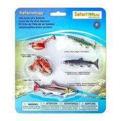 Safari Ltd  Набор фигурок Жизненный цикл лосося