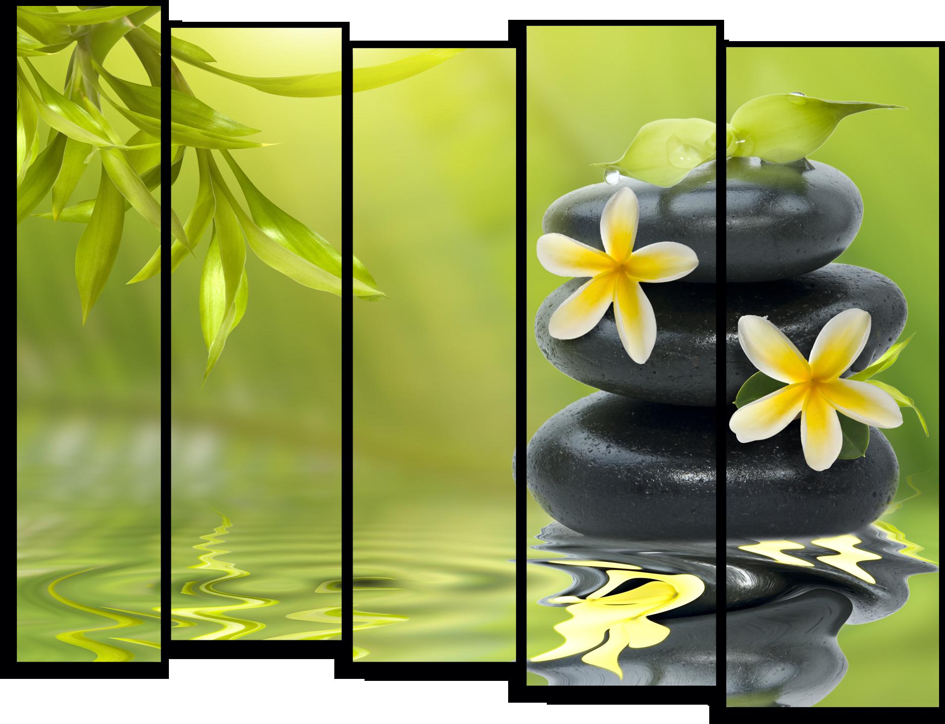 """Цветы Модульная картина """"Цветы на камнях"""" М763.png"""