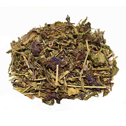 Травы Дубровник обыкновенный teucrium-195.jpg