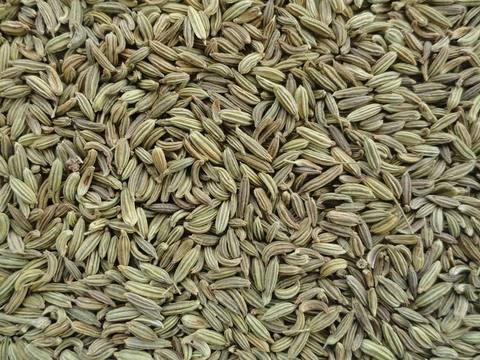 Семена для микрозелени фенхеля