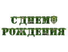 """Гирлянда С ДР """"Камуфляж"""""""