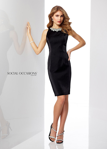 Social Occasions 217851