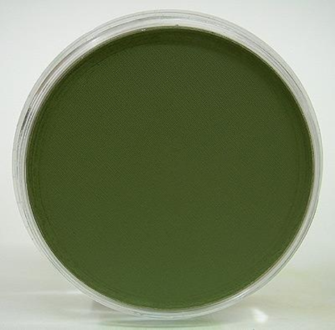 Ультрамягкая пастель PanPastel / Chrom Ox Green Shade