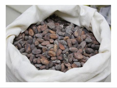 Какао-бобы Venezuela Sur del Lago