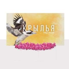 Набор реалистичных ресурсов для игры «Крылья. Птицы Океании»